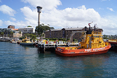 Port Authority vessels berthed at Moore's Wharf, Sydney Harbour