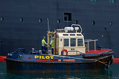 Pilot vessel at Port of Eden