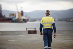 A Port Authority employee with his back to the camera looking at Port Kembla