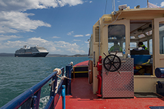 On board a pilot vessel with cruise ship in the background at Port of Eden